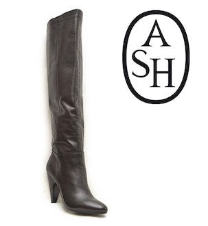 ASH Women's •Intense• Tall Shafted Boot - Black Leather - ShooDog.com