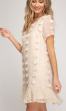 Dream In Details Embellished Dress PREORDER