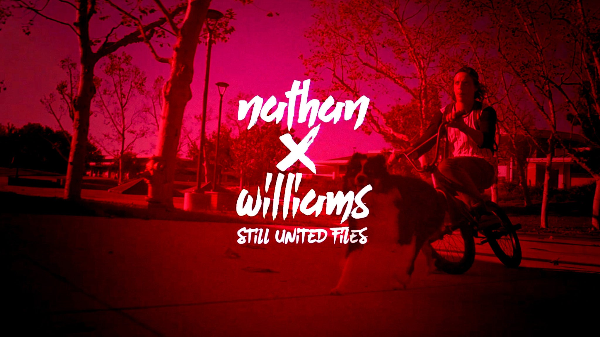 Nathan Williams- Still United Files