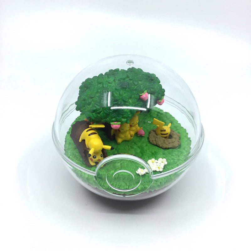 Pokémon Terrarium Collection DX