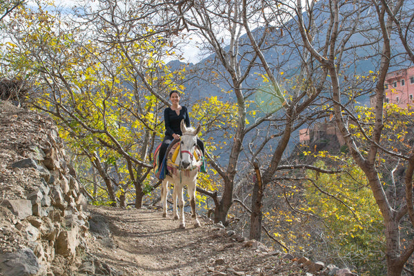 Sophee Smiles - At Home in Morocco - Sophee Riding Horse on Path