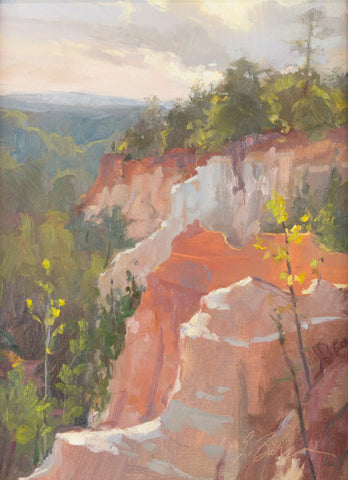 """Providence Canyon""by Suzie Greer Baker"