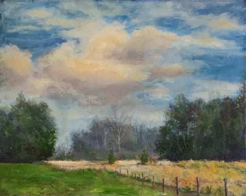 """Field and Sky"" by Warren Griffin"