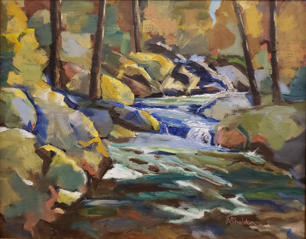 """North Georgia Mountain Stream"" by Andrew Sheldon"