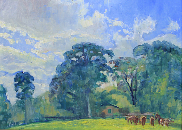 """Spring Skies Over Mabry Farm"" by Ed Cahill"