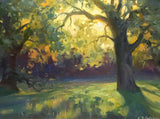 """Oaks at Sunrise""  by Kathleen Hudson"