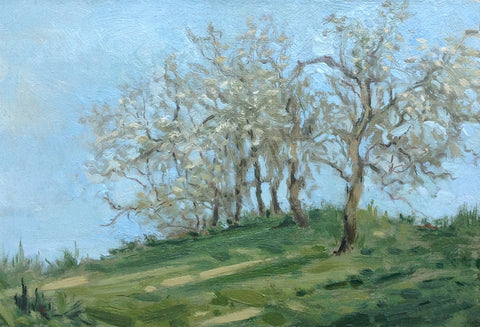 """May Orchard"" by Crista Pisano"