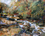 """For Love of the Mountain Stream"" by Cynthia Rosen"