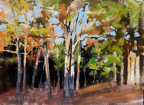 """Sunlit Grove"" by Patrick Saunders"
