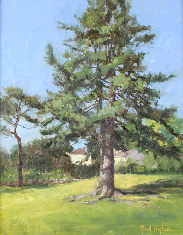 """Summer Pine"" by Neal Hughes"