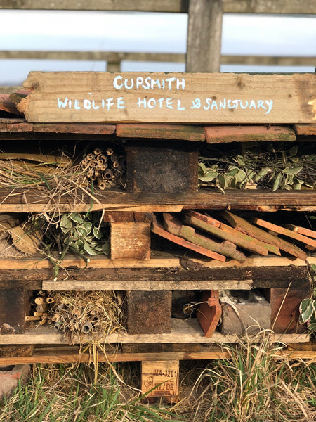 Cupsmith wildlife hotel and sanctuary