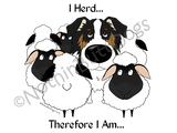 Australian Shepherd I Herd.... Light Colored T-shirts