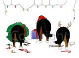 Nothin' Butt A Berner Christmas Greeting Cards