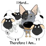 I Herd Blue Australian Cattle Dog T-shirts - More Colors Available