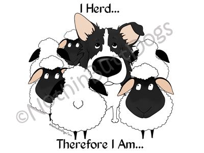 Border Collie I Herd.... Light Colored T-shirts