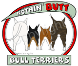 nothin' butt bull terriers