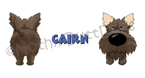 Big Nose Cairn Terrier 11 oz Mug