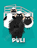 Big Nose Puli with Sheep Matted Art Print