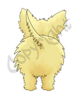 Light Cairn Terrier Butt