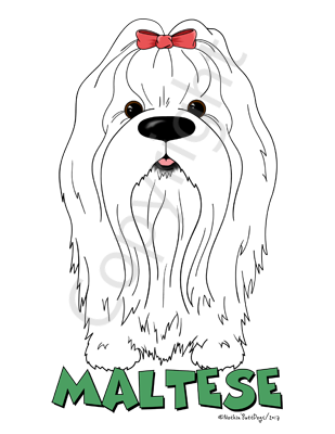 Big Nose Maltese Light Colored T-shirts