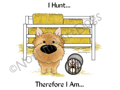 Norwich Terrier Barn Hunt.... Light Colored T-shirts