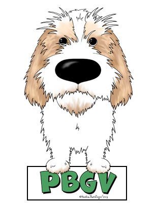 Big Nose PBGV Magnet - More Colors Available