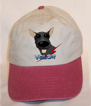 Custom Valor Cap - Stone Washed w/Maroon Bill