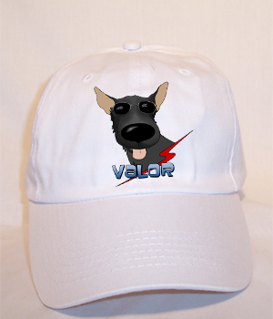 Custom Valor Budget Cap - White