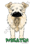 Big Nose Soft Coated Wheaten Terrier Light Colored T-shirts