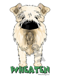 Big Nose Soft Coated Wheaten Terrier Shirts - More Styles and Colors Available