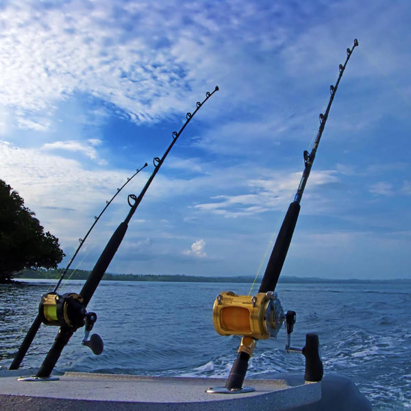 Beginner 39 s guide to choosing a fishing rod 4 things to for Best fishing pole for beginners