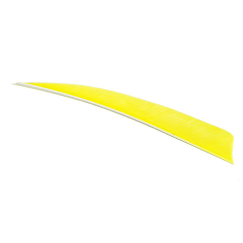 Trueflight Shield Cut Feathers Chartreuse 5 in. RW 100 pk.