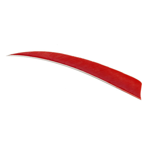 Trueflight Shield Cut Feathers Red 5 in. RW 100 pk.