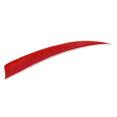 Trueflight Shield Cut Feathers Red 5 in. LW 100 pk.