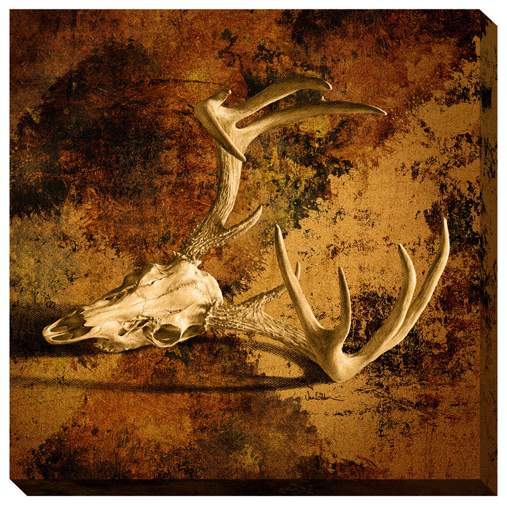 Wild Wings Wrapped Canvas Whitetail Deer Skull Sepia