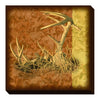 Wild Wings Wrapped Canvas Buck Skull