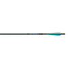 Carbon Express Predator Arrows 2040 4 in. Feathers 6 pk.