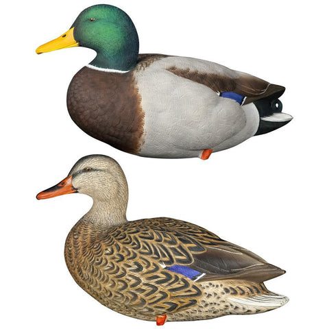 Avian X Full Body Decoys Mallard 6 pk.