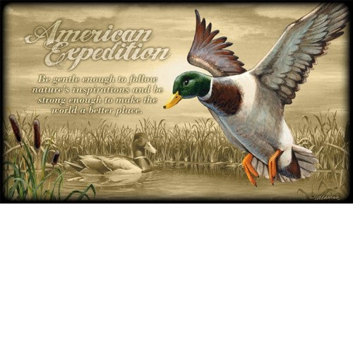 American Expedition Canvas Art - Mallard