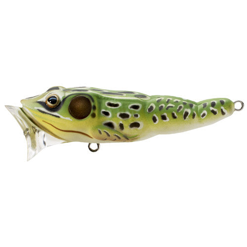 "Koppers LiveTarget Frog popper 2 1/2"" 1/4oz Green/Yellow"