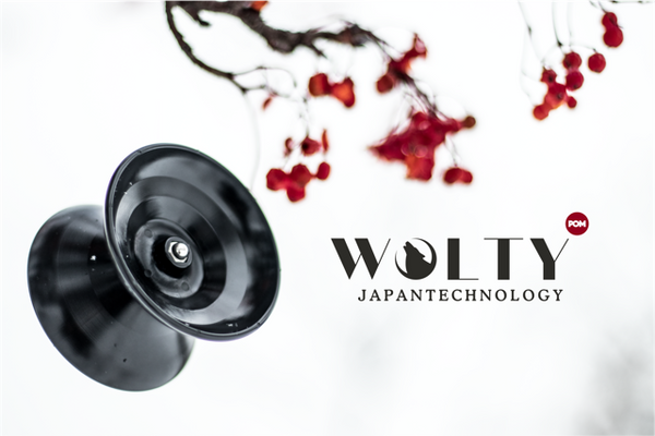 japan tech wolty