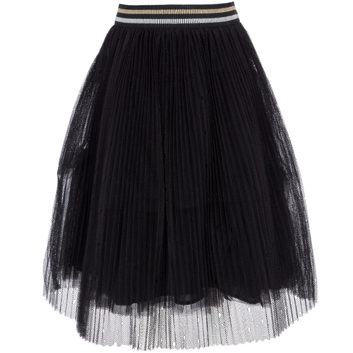 Black Skirt With Mesh Covering