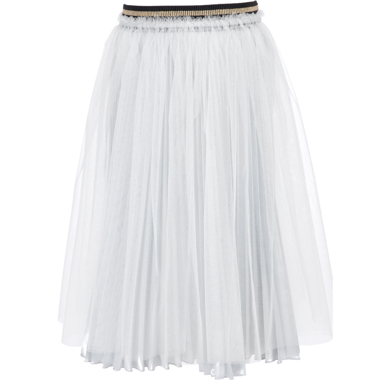 Silver Skirt With Laced Covering