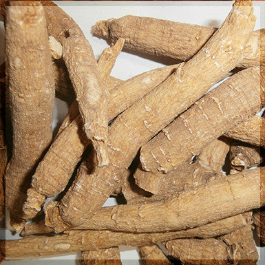 American Ginseng Root, Wisconsin