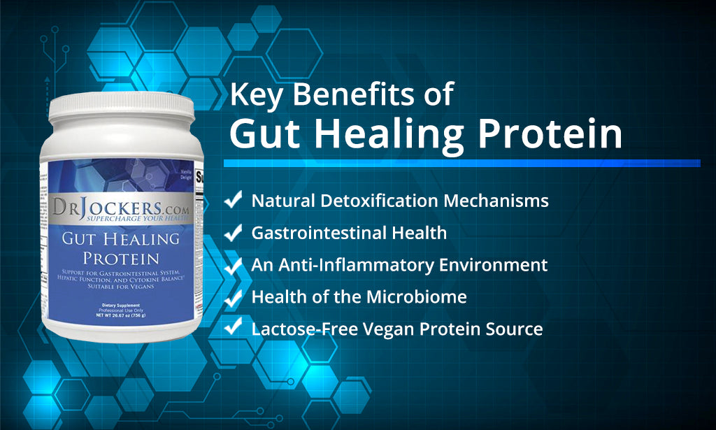 heal leaky gut, 6 Nutrients That Heal Leaky Gut Syndrome