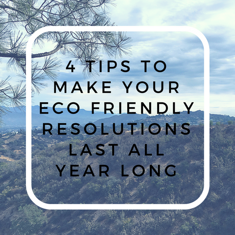 making your eco friendly resoluations last all year long