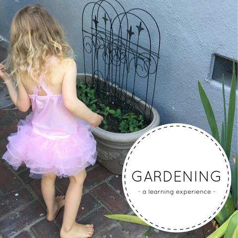 Gardening is a learning experience for toddlers - Piperoos