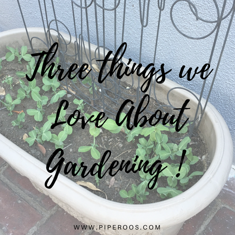 Three things we love about gardening Piperoos