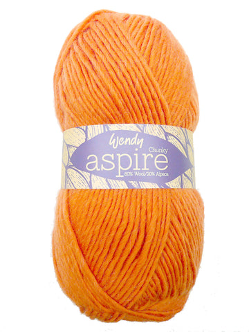 Aspire Chunky -  at Spun Yarn Shop - 1