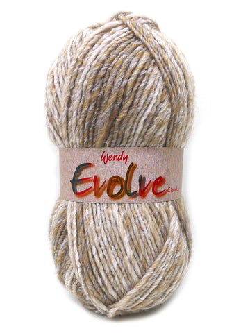 Evolve Chunky -  at Spun Yarn Shop - 1